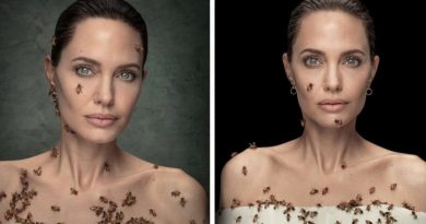 Angelina Jolie Poses With A Swarm Of Bees On World Bee Day To Raise Awareness