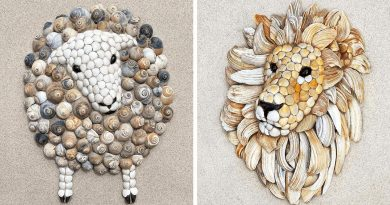 Artist Creates Animal Portraits From Seashells And The Results Are Amazing