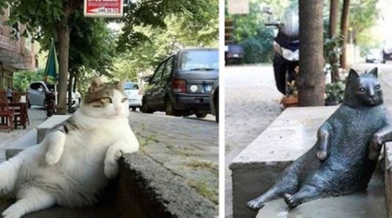 Locals Create Statue In Honor Of City's Beloved Cat At His Favorite Spot